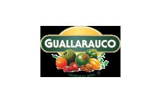 guallarauco_2018